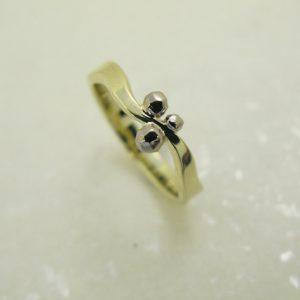 Ring voor Erna